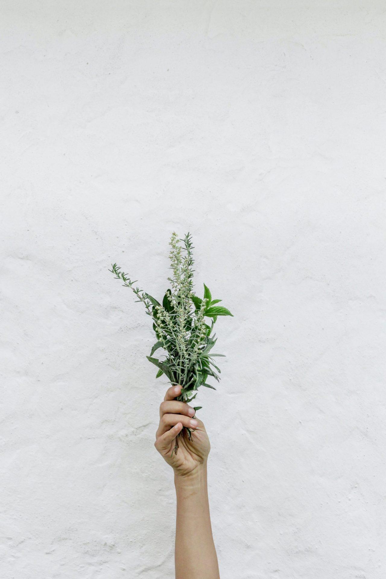bouquet aromatique